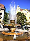 Fountain  Timisoara Royalty Free Stock Images