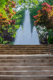 Fountain at Top of Stairs. A fountain flows atop a set of concrete stairs surrounded by lush foliage royalty free stock photography