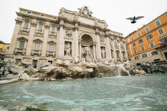 Fountain of Trevi. The tourist that came here will throw coins in the fountain and start wishing royalty free stock photo