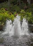 Fountain in tropical garden Royalty Free Stock Photos