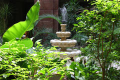 Fountain in tropical trees Royalty Free Stock Photos
