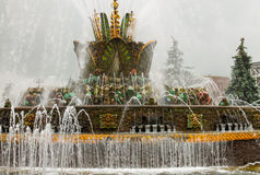 Fountain on VDNH, Moskow Royalty Free Stock Photography
