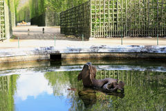 Fountain at Versailles in the form of a Dolphin on the side alley. In the early morning stock image