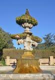 Fountain of Villa pamphili in rome Stock Photography