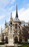 Fountain of the Virgin and Notre-Dame de paris Stock Image
