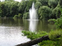 Fountain, water, stream, green, forest. Fountain, water, stream green forest nature landscape Royalty Free Stock Image
