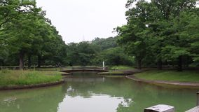 Fountain at Yoyogi park stock video footage