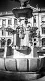 Fountaine 在黑白的艺术性的神色 免版税库存照片
