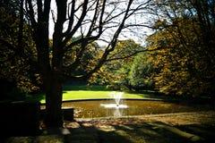 Fountaine in citypark Stock Foto