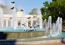Fountaine de la ciudad con las palomas Imagen de archivo libre de regalías