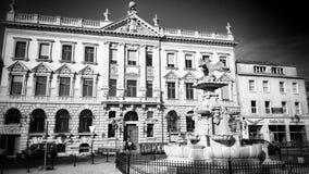 Fountaine Konstnärlig blick i svartvitt Arkivfoto