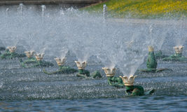 Fountains 1. Rows of fountains in summer in a park Royalty Free Stock Photography