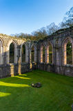 Fountains Abbey 6. Fountains Abbey in west yorkshire, uk Stock Photos