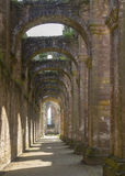 Fountains Abbey arches Royalty Free Stock Photo