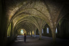 Fountains Abbey  Cellarium ghost Royalty Free Stock Photo