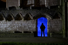 Fountains abbey at night with silhouette Royalty Free Stock Photos