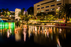 Fountains and buildings at night in Grand Park  Royalty Free Stock Photos