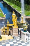 Fountains in the lower garden of Peterhof Stock Images