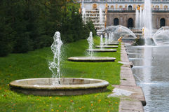 Fountains In Lower Park Of The Peterhof Royalty Free Stock Photography