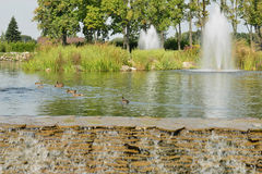 Fountains on the lake Stock Image