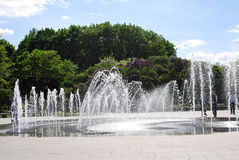 Fountains and Lilac trees. Taken in Lilac garden in Moscow. Stock Photo