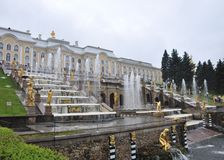 Fountains and palaces of Peterhof. Well-known Big cascade, fountain Samson Royalty Free Stock Images