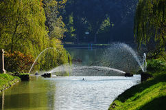 Fountains in the park. Four fountains in the city park Royalty Free Stock Photography