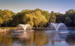 Fountains in the park Stock Photo