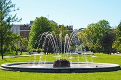 Fountain in the Park. Stock Image