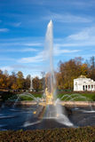 Fountains in the park, Petergof Russia Stock Photography