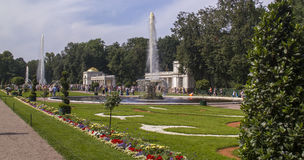 The Fountains and park in town Peterhof, Russia. Royalty Free Stock Images
