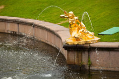 Fountains of Petergof. Saint Petersburg, Russia Royalty Free Stock Images