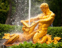 Fountains of Petergof Stock Photo