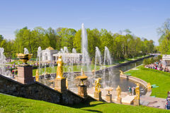 Fountains of Petergof. Petergof Palace is a series of palaces an Royalty Free Stock Images