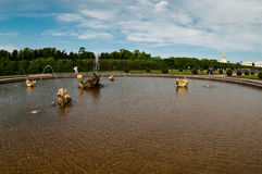 Fountains of Peterhof royalty free stock photography