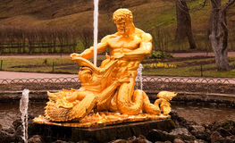 Fountains of Peterhof. Gold statues set against a background of the fountains at Peterhof (Petroverts) - Imperial Russia royalty free stock images