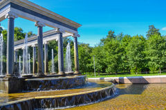 The Fountains Peterhof. Fountain Lion Cascade in Peterhof. The popular tourist attraction places in St. Petersburg and the Leningrad region Royalty Free Stock Photos