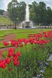 Fountains of peterhof Stock Photo
