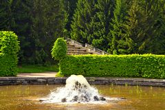 Fountains in Peterhof. Saint Petersburg, Russia Stock Photos