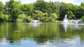Fountains in the pond stock video footage