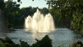 Fountains in a pond. Trees and building near water. Perfect place to rest stock video footage