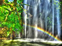 Fountains With Rainbow. And with pineapple trees, photographed in Madeira Stock Photos