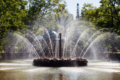 Fountains Sun in Russia Stock Images