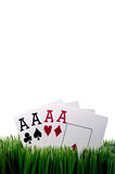 Four ace playing cards in grass Stock Photos