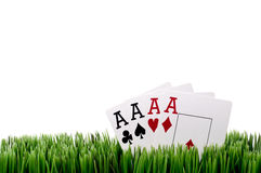 Free Four Ace Playing Cards In Grass Stock Photos - 9695003
