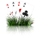 Four aces behind grass reflected Royalty Free Stock Images