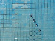 Four alpinist climbing  for cleaning the building window glass Stock Image