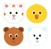 Four animal faces Royalty Free Stock Images