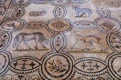 Four animal mosaics inside Basilica di Aquileia Stock Image