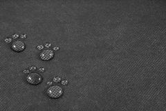 Four animalistic footprints. On black background stock photo